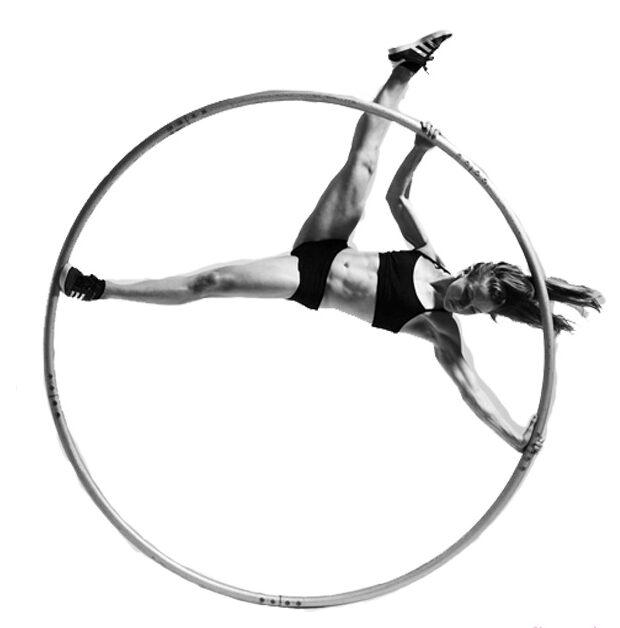 колесо сіра